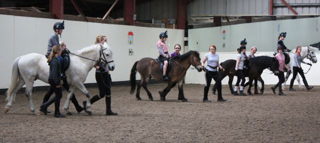 Ponies doing musical ride