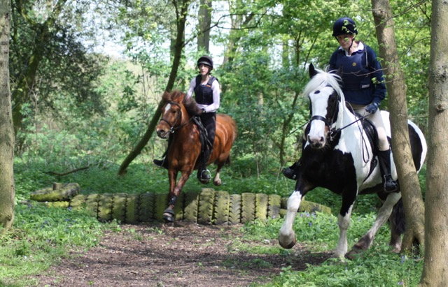 Molly and Starra in the woods at Berwick Farm