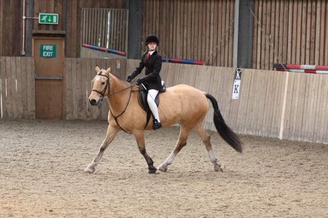 Fergus doing dressage at regional championships