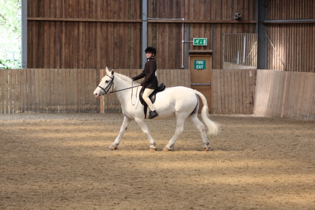 Macie doing RDA dressage