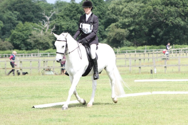Oural doing dressage