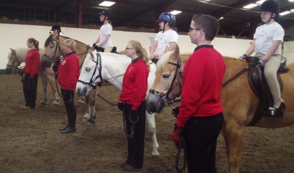 Team of ponies working