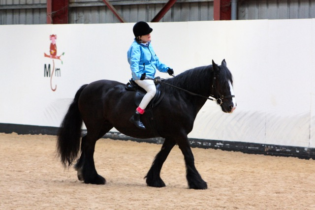Lula and Emma doing dressage