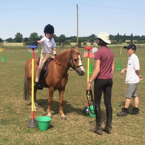 Isabelle and Tango at the apple tree obstacle
