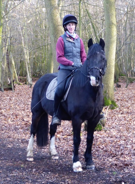 Penny being ridden by the Clare in the woods.